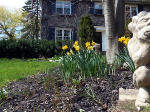 Essential Spring Maintenance For Your Rental Home