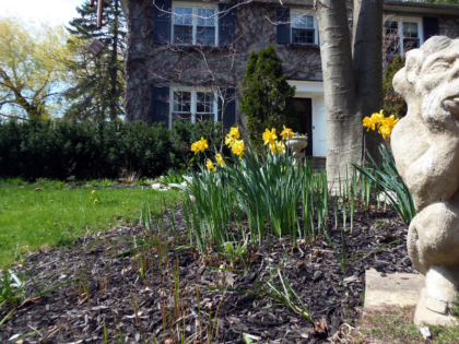 Essential Spring Property Maintenance Tips