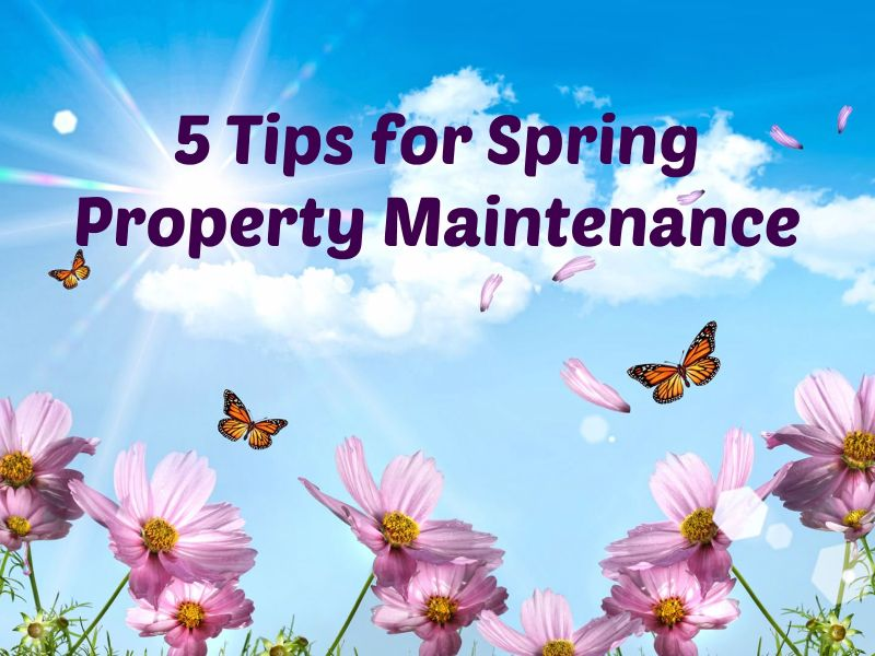 spring property maintenance tips