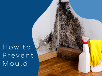 How to Prevent Mould – A Guide For House Sharers
